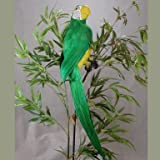 20 Inch Long Colorful Green Artificial Macaw Parrot Bird for Displays, Commercial Design, and Entertaining