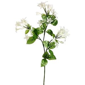 """27"""" Stephanotis Silk Flower Stem -White (Pack of 12) 6"""