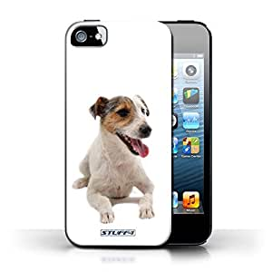 KOBALT? Protective Hard Back Phone Case / Cover for Apple iPhone 5/5S | Jack Russell Terrier Design | Dog Breeds Collection