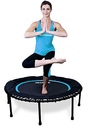 Leaps & ReBounds Bungee Rebounder - in-Home Mini Trampoline - Safety Bungee Cover, 32 Latex Rubber...