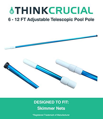 We Analyzed 3,755 Reviews To Find THE BEST Telescopic Pole Pool