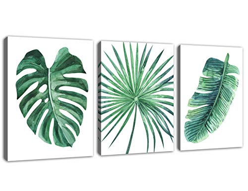 Green Leaf Wall Art Tropical Plants Simple Life Picture Artwork, 3 Pieces Contemporary Canvas Art Minimalist Watercolor Painting of Monstera Palm Banana Wall Decor for Bathroom Living Room Bedroom (Leaf Picture Banana)