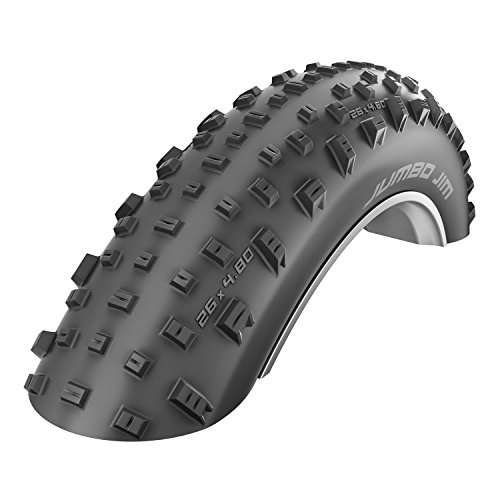 Schwalbe Jumbo Jim Evolution TL Easy Folding Tire, 4.0 x 26
