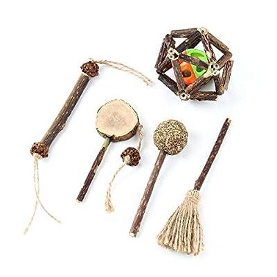 CatNip for Cats TEEPAO Actinidia Polygama Catnip Toy Set, Molar Stick Set with Mint Lollipops/Matatabi Sticks/Silver [tag]