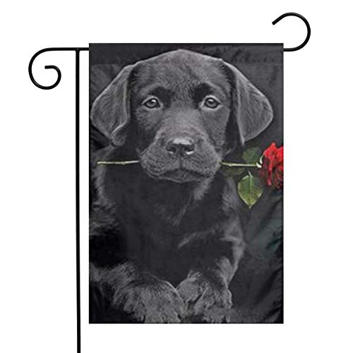 Labrador Retriever Puppy Black Lab Dog Cute Themed Welcome Mailbox Small Jumbo For Outdoor Decorations Ornament Picks Garden House Home Yard Traditional Decorative Front 12
