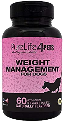 Weight Management Supplement for Dogs – 60 natural chews tablets, with L-Carnitine, Garcinia Cambogia Extract, Green Tea Extract and Chromium Polynicotinate – For Overweight dogs - support the normal burning of fat – supports a healthy Appetite - Made in
