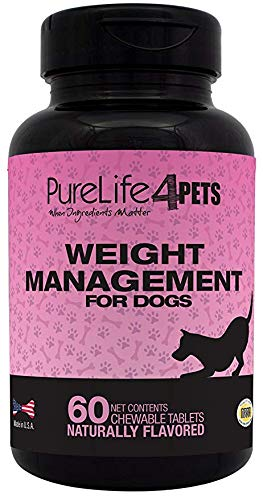 Weight Management Supplement for Dogs -  60 natural chews tablets, with L-Carnitine, Garcinia Cambogia Extract, Green Tea Extract and Chromium Polynicotinate - For Overweight dogs - support the normal burning of fat - supports a healthy Appetite -  Made in USA ()