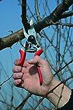 Felco Ergonomic Hand Pruner with 1-inch Cutting