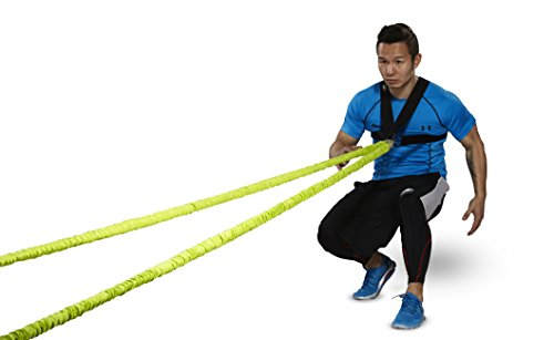 44SPORT Speed And Agility Training Equipment - Strength Bands And Bungie Cords - Running Resistance Harness Belts - Bungee Cord – Suitable For Baseball, Basketball, Football, Yoga, Soccer Training by 44SPORT