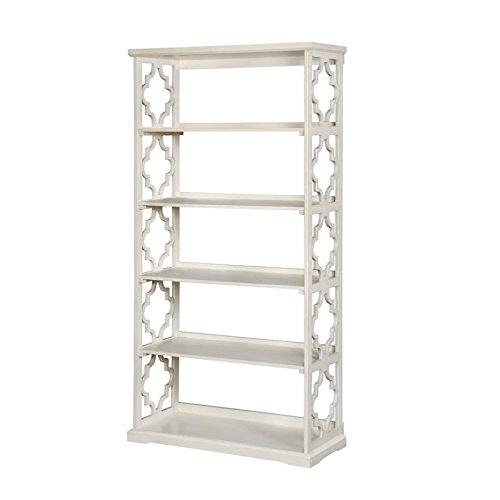 Furniture of America Vera Contemporary 5 Shelf Bookcase in White