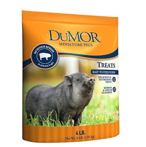 AZ Micro Mini Pigs DuMor Miniature Pig Treats 4 lb. Bag