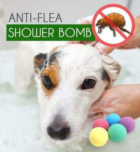 Most Popular Bath Bombs