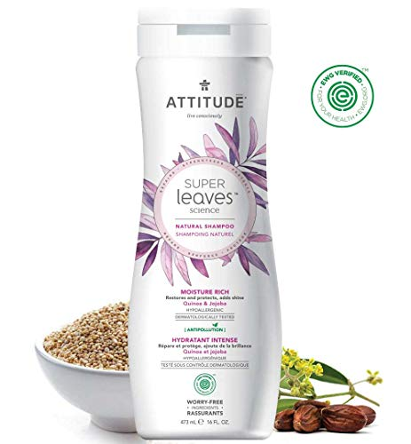 Natural Shampoo for Dry, Brittle Hair: EWG VERIFIED, Hypoallergenic & Dermatologist Tested - Super leaves Moisture Rich (16oz)