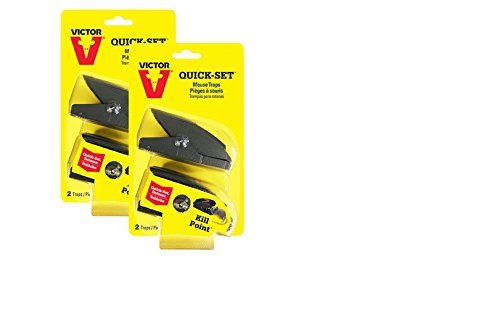 (Victor Quick-Set Mouse Trap - 2 Pack (4 Traps) M137 - One touch set)