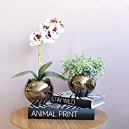 Kit com 2 Arranjos Flor Artificial Orquídea Tigre e Peperômia no Vaso de Vidro Bronze
