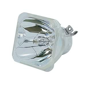 Lutema Platinum Lámpara con Carcasa para Proyector Panasonic ...