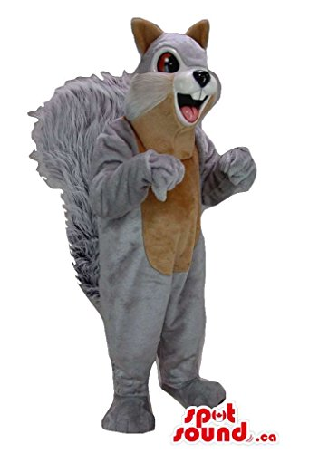 Carto (Brown Squirrel Costume)