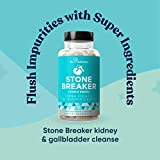 Stone Breaker Chanca Piedra – Natural Kidney