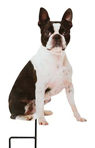 Boston Terrier Garden Stake Photo-Realistic Metal Dog Cutout for Yards Planters Lawns and Garden Decor (Sculpture Metal Terrier)