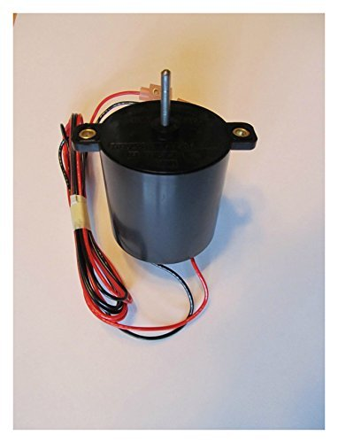 (12 Volt 20 RPM DC electric fireplace motor Guaranteed Quality)