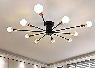 FGHOME Modern Style Flush Mount Designers Metal 10-Light Ceiling Lamp Chandelier Lighting Fixure