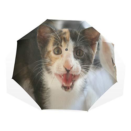 What Cats Can Teach You Compact Travel Umbrella Rain Anti-UV Protection Sun Umbrellas