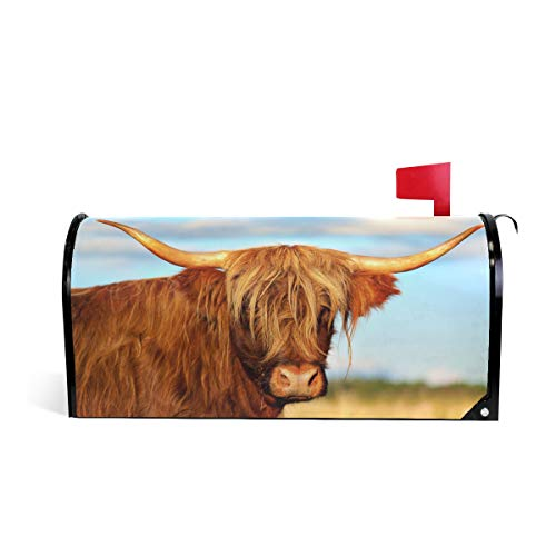WOOR London City Highland Cow Magnetic Mailbox Cover