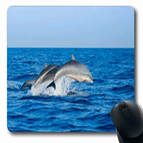 Mousepads Wild Couple Jumping Dolphins Blue Life Sea Sky Wildlife Dolphin Nature Breaching Oblong Gaming Mouse Pad Non-Slip Rubber Mat
