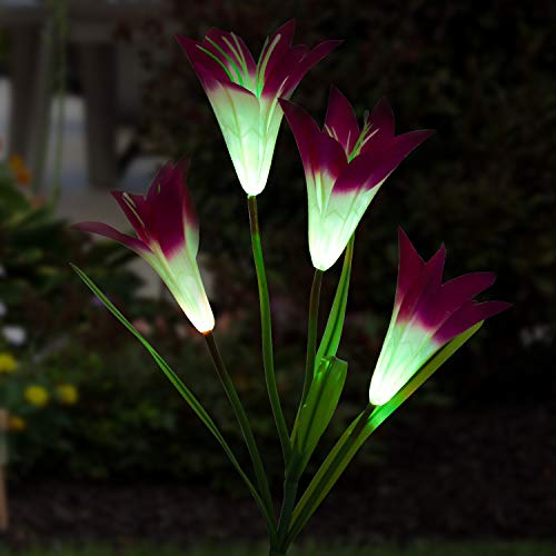 - Solar Garden Stake Lights Outdoor, MayBest Solar Powered Lights, Lily Flower Lights, Multi-Color Changing LED Solar Decorative Lights for Garden Patio Yard Lawn Path (Purple)