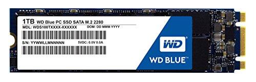 WD Blue 1TB PC SSD - SATA 6 Gb/s M.2 2280 Solid State Drive - WDS100T1G1B0B [Old Version]