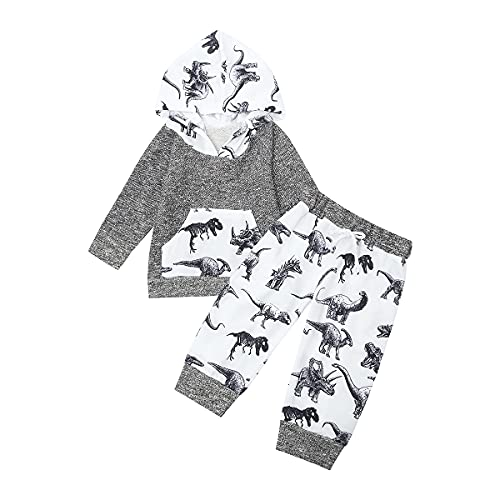 baby boy winter clothes 12-18 months fall clothing sets outfits dinosaur grey gray white long sleeve hoodies pants shirts