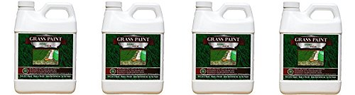 1,000 Sq. Ft. 4EverGreen Grass and Turf Paint (4-Pack)