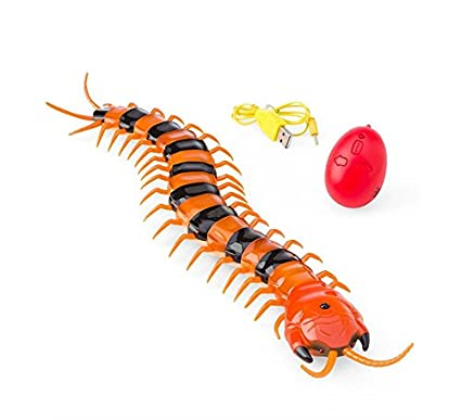 Amazon com: HearthSong Remote-Control Centipede: Toys & Games