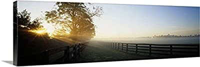 Canvas On Demand Premium Thick-Wrap Canvas Wall Art Print entitled Sunlight passing through trees, Horse Farm, Woodford County, Kentucky