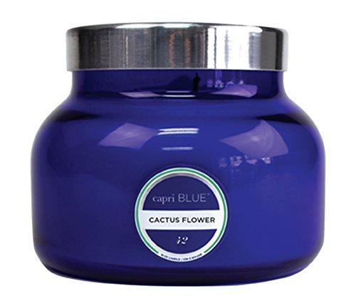 Capri Cfl - Capri Blue Petite 8 Ounce Jar Candle with Lid-Blue-Cactus Flower