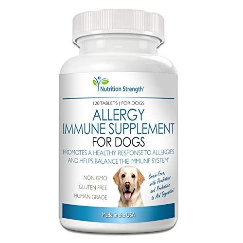 Nutrition Strength Allergy Immune Supplement for Dogs with Omega 3 Fish Oil, Prebiotics and Probiotics, Grain-Free Support for Food, Skin, Seasonal, Environmental Dog Allergies, 120 Chewable Tablets