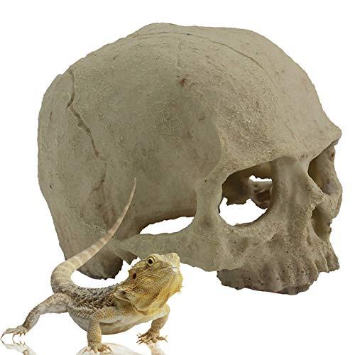 reptile resin - 7