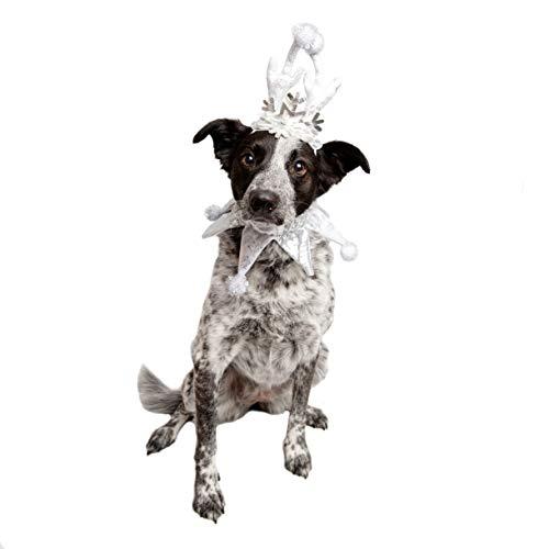 Pet Krewe PK00303L Silver Snowflake Dog Antler & Collar Set, Large/X-Large -