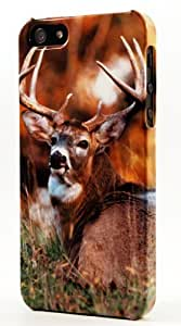 LJF phone case Sitting Buck With Huge Antlers Dimensional Case Fits ipod touch 4