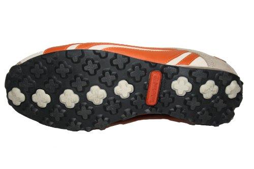 Timberland - Zapatillas de Deporte de cuero Mujer multicolor - Multicolore - Mehrfarbig (brown/brun)