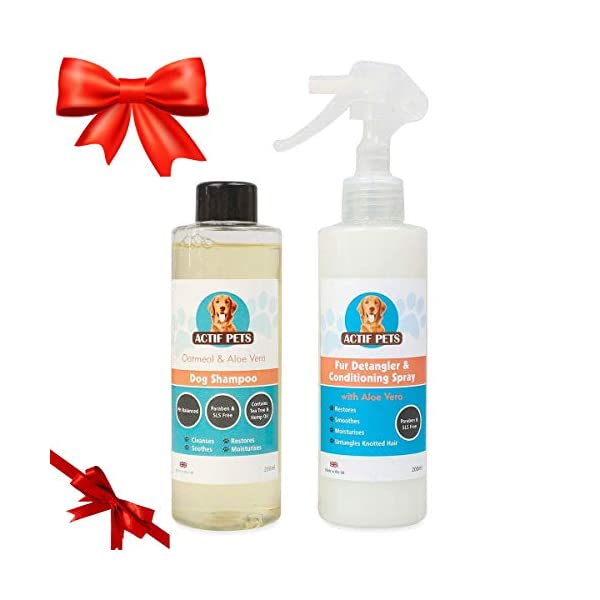 Actif Pets Itchy Dog Shampoo plus Conditioner with Oatmeal, Aloe Vera, Tea Tree and Hemp Oil for Itchy Dog Skin & Dry Coat