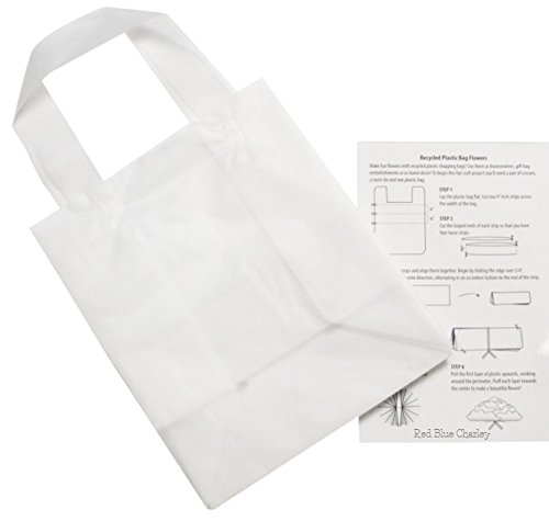 24 Clear 8x4x10 Frosted Plastic Gift Bag with Craft Insert