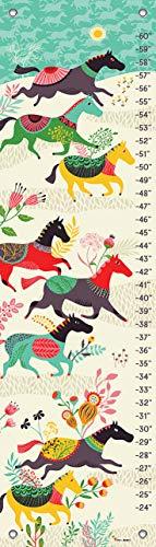 Oopsy Daisy Growth Charts Baby - Oopsy Daisy Growth Charts Wild Horses by Helen Dardik, 12 by 42-Inch