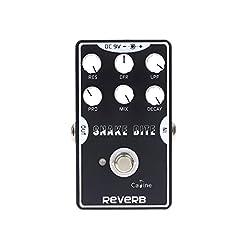 CP-26 REVERB Gitarre