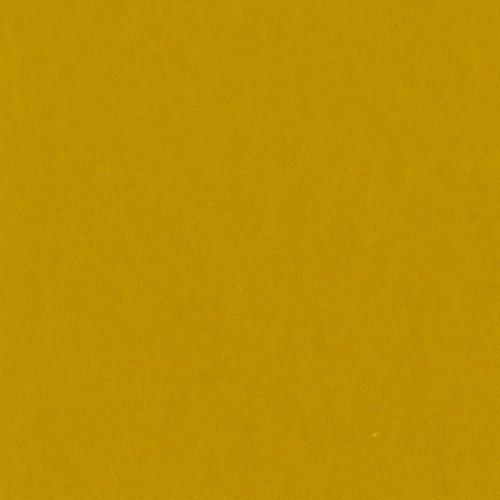 - Bazzill Basics T4-483 Card Shoppe Heavy Weight Cardstock, Gold Coins, 25 Sheet Pack, 12 x 12 Inches
