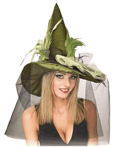 Rubie's Costume Co Grn Witch with Feathr& Veil Costume -