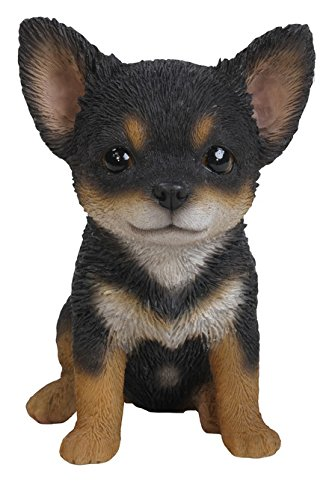 Brown Chihuahua - Hi-Line Gift Ltd Chihuahua Puppy Statue, Black/Brown