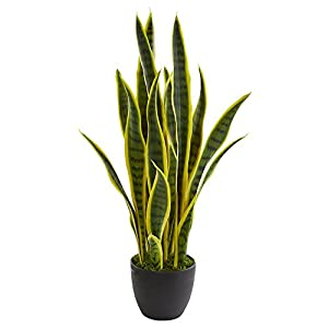 Nearly Natural 6349 26 in. Sansevieria Artificial Silk Plants, Green 40