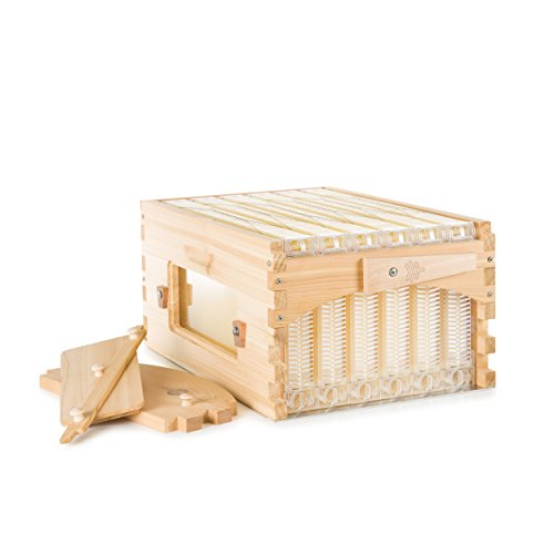 Flow Official Super Classic Cedar 6 Frame - beehive super featuring patented tech, fits an 8 frame Langstroth style hive Cedar Frame