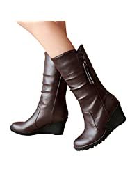 Susanny Winter Snow Boots Platform Wedge Heel Women Formal Work High Heels Mid Calf Boots with Zipper